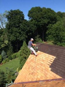 Cedar Roof Treatments